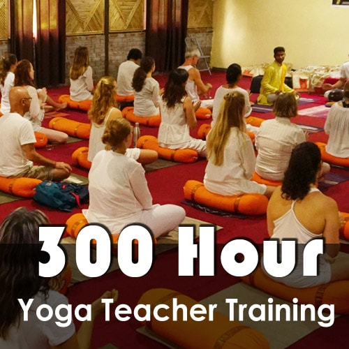 Yoga TTC Scholarship in India
